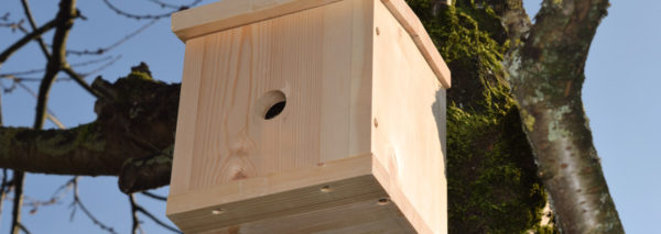 Completed bird house