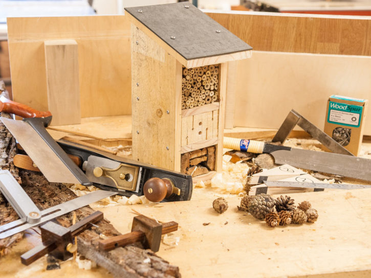 How to Make an Insect Inn
